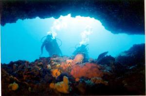 Underwater Caverns:  Courtesy diving-europe.divescover.com